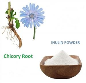 Buy Inulin Powder