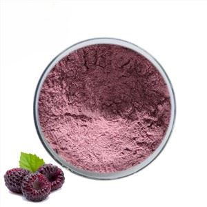 Freeze Dried Black Raspberry Powder