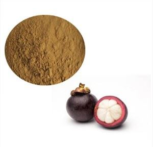 Mangosteen Fruit Juice Powder