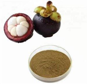 Mangosteen Powder Wholesale