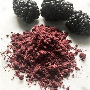 Organic Black Raspberry Powder