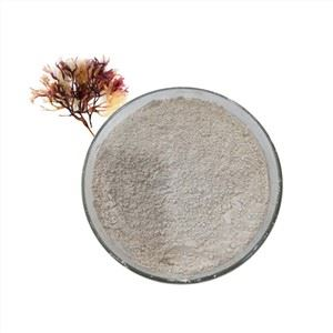 Sea Moss Powder